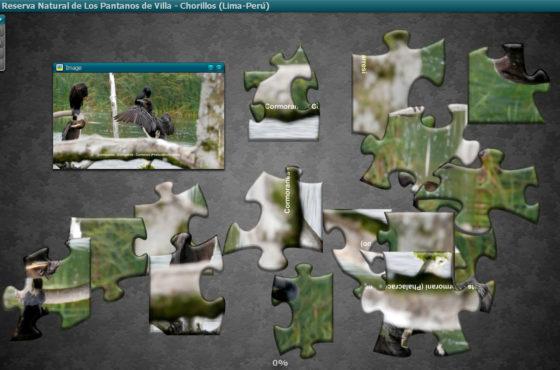 Birds of Los Pantanos de Villa – Puzzle
