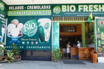 BIO FRESH – Ice-Cream Shop – Chanchamayo